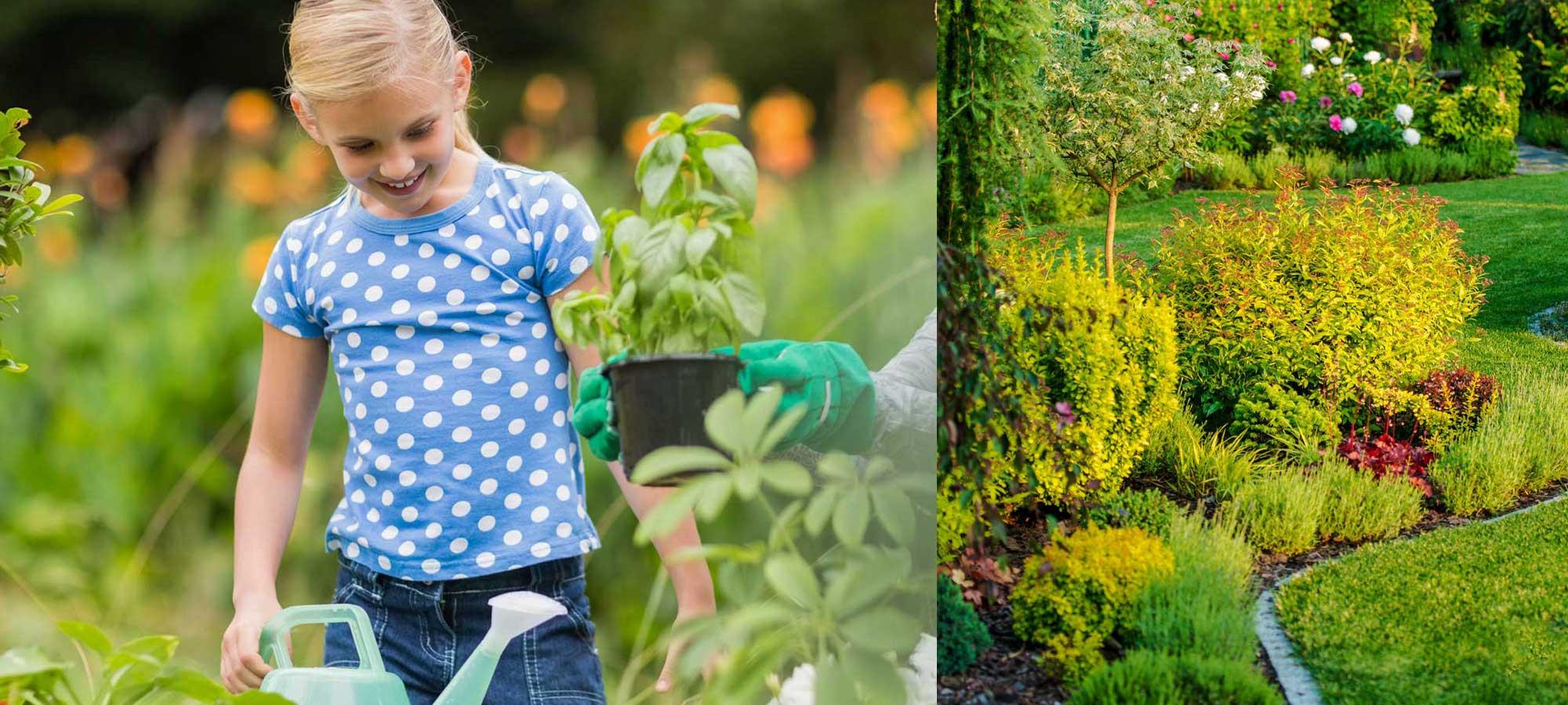 Jardin projet domicile