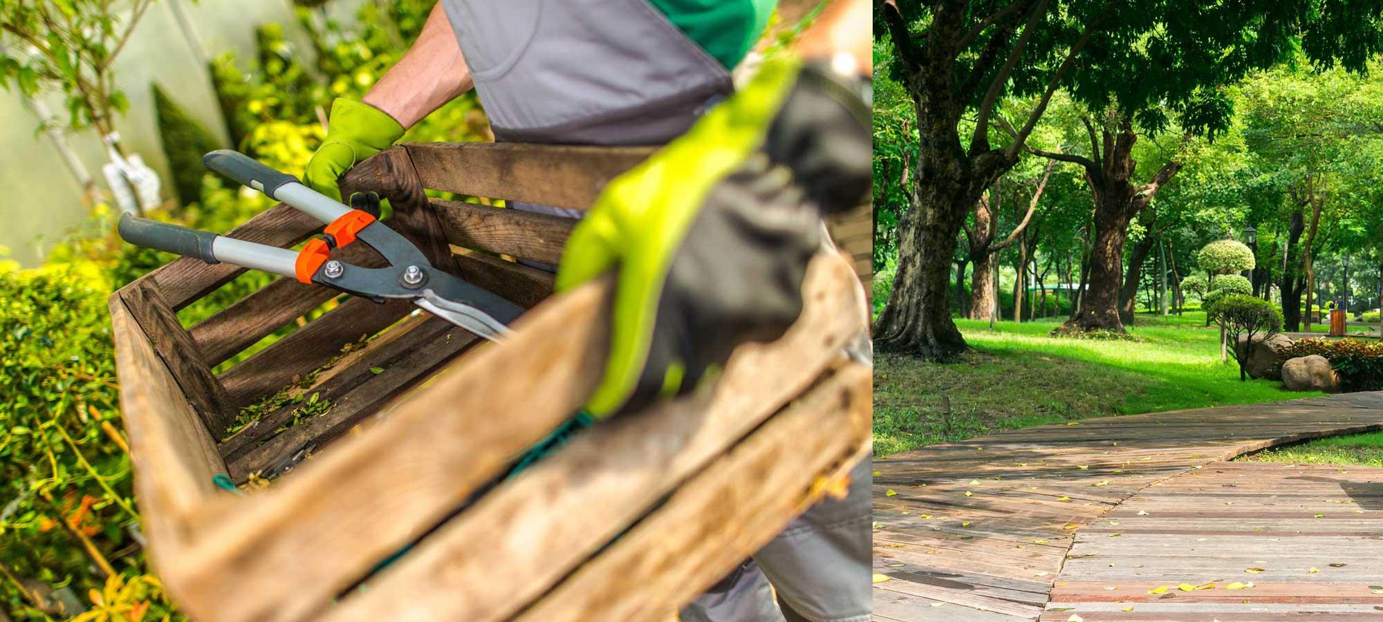 Horticulture services aux entreprises